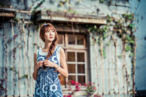 Fotos & Bilder Asiatische Kleid Hand Zopf Bokeh Braunhaarige Mädchens
