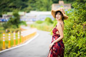 Desktop hintergrundbilder Asiatische Kleid Der Hut Blick Unscharfer Hintergrund junge frau