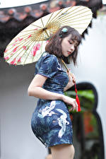 Fotos Asiatische Kleid Regenschirm junge Frauen