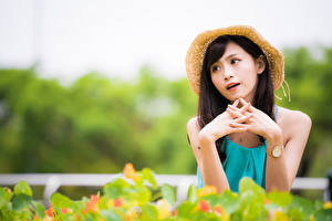 Pictures Asian Hands Hat Blurred background young woman