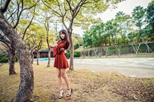 Hintergrundbilder Asiatische Bäume Kleid Bein junge Frauen