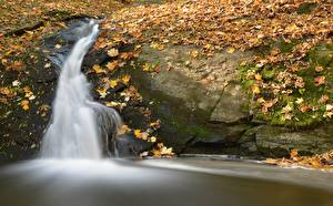 Image Autumn Waterfalls Leaf Stream Moss Nature