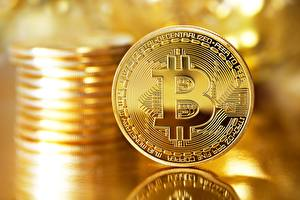Picture Bitcoin Coins Gold color