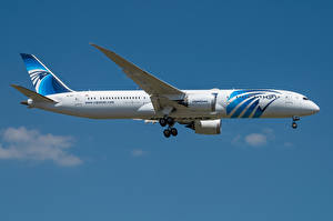 Pictures Boeing Airplane Passenger Airplanes Side 787-9, Egypt Air, Dreamliner