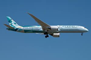 Fotos & Bilder Boeing Flugzeuge Verkehrsflugzeug Seitlich Dreamliner, 787-10, Etihad Airways Luftfahrt