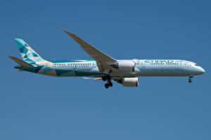 Tapety na pulpit Boeing Samoloty Samolot pasażerski Widok z boku Dreamliner, 787-10, Etihad Airways