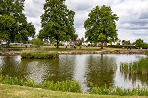Fotos England Teich Bäume Dorf Tylers Green Natur