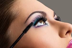 Pictures Eyelash lash Closeup Model Face Makeup