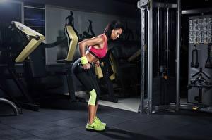 Hintergrundbilder Fitness Turnhalle Trainieren Hanteln Sport Mädchens