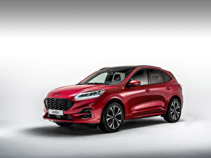 Image Ford Crossover Red Metallic Ford Kuga ST-Line X EcoBlue Hybrid 2020 automobile