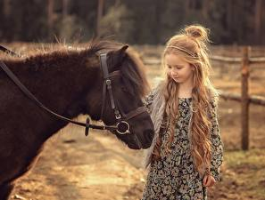 Desktop wallpapers Horse Pony Little girls Hair Victoria Dubrovskaya Animals Children