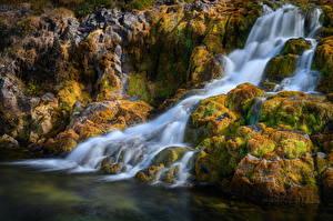 Bilder Island Wasserfall Stein Flusse Laubmoose Dynjandi waterfall, Westfjords Natur