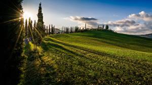 Фотография Италия Тоскана Холм Деревья Солнце Облака Траве Лучи света