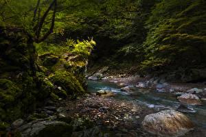Desktop hintergrundbilder Japan Steine Laubmoose Bäche Iya Valley Natur
