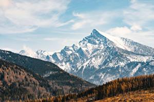 Fotos Gebirge Wälder Slowakei Tatras