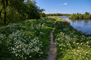 Hintergrundbilder Niederlande Amsterdam Flusse Frühling Weg Bäume Gras Twiske-Waterland