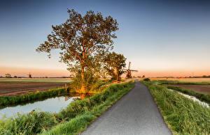 Fotos Niederlande Wege Acker Mühle Bäume Alblasserwaard Natur