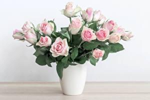 Fotos Rose Sträuße Vase Blumen