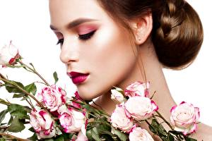 Photo Roses Brown haired Modelling Makeup Hairstyles White background Flowers