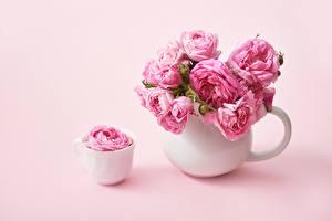 Fotos & Bilder Rosen Rosa Farbe Tasse Vase Blumen