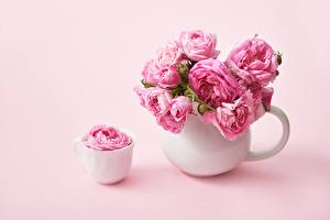 Picture Roses Pink color Cup Vase flower