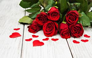 Picture Rose Red Heart Boards Flowers