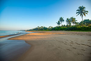 Hintergrundbilder Sri Lanka Küste Meer Palmen Strand Bentota Beach