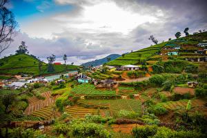 Bilder Sri Lanka Gebirge Felder Wolke Nuwara Eliya Natur