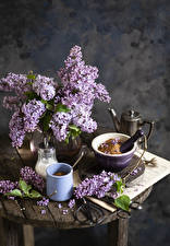 Pictures Still-life Lilac Branches Mug