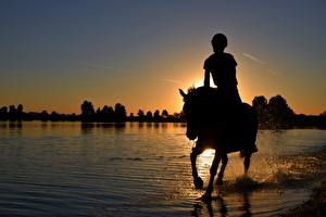 Pictures Sunrise and sunset Horses Lake Sit Silhouettes Water splash animal