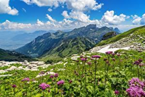 Image Switzerland Mountain Scenery Alps Grass Churfirsten, St. Gallen