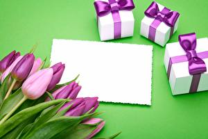 Tapety Tulipany Fioletowy Prezenty Szablon karty z pozdrowieniami Kwiaty zdjęcia zdjęcie