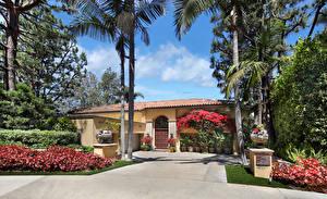 桌面壁纸,,美国,房屋,豪宅,设计,灌木,棕榈科,Newport Beach,