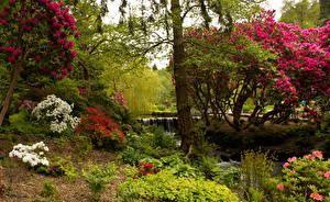 Hintergrundbilder Vereinigtes Königreich Garten Bäume Strauch Bodnant Garden
