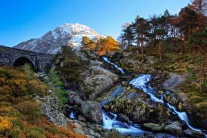 Papéis de parede Reino Unido Montanhas Pedras Rios Pontes País de Gales árvores Rocha Tryfan, Ogwen Valley Naturaleza imagens