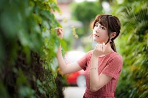 Fotos Asiaten Bokeh Hand Braunhaarige junge Frauen