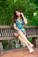 Photo Asian Brown haired Bench Sitting Legs Gown Glance Beautiful young woman