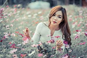 Hintergrundbilder Asiaten Braune Haare Starren Hand Niedlich junge frau