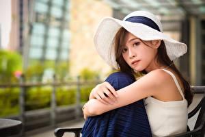Bilder Asiatische Braunhaarige Der Hut Blick Sitzen Hand Mädchens