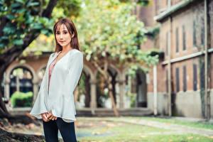Hintergrundbilder Asiatisches Braunhaarige Posiert Starren Unscharfer Hintergrund junge Frauen