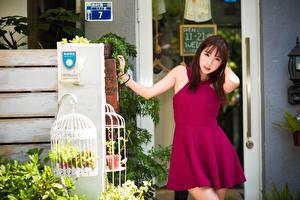Bilder Asiatische Kleid Pose Mädchens