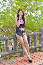 Bakgrunnsbilder Asiater Gjerder Ben Kjole Blikk Brunt hår kvinne Unge_kvinner