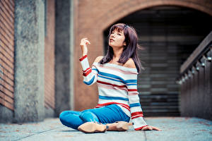 Bilder Asiatische Sitzt Jeans Sweatshirt Bokeh Mädchens