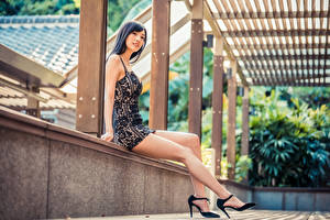 Bilder Asiatische Sitzend Bein Stöckelschuh Kleid junge frau