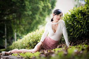 Pictures Asiatic Sitting Skirt Blouse Glance Bokeh young woman
