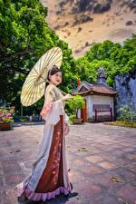 Hintergrundbilder Asiatische Regenschirm Brünette Pose Kleid HDR Mädchens