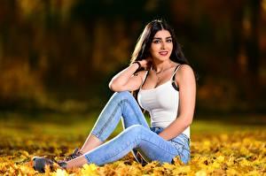 Hintergrundbilder Herbst Sitzt Blattwerk Jeans Unterhemd Blick Unscharfer Hintergrund Brünette Anita junge Frauen Natur