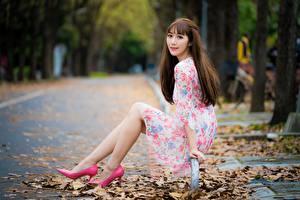 Bilder Herbst Asiatische Blatt Braune Haare Sitzend Kleid Bein High Heels junge frau