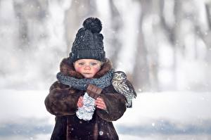 Pictures Chocolate bar Bird Owls Winter Winter hat Sadness Blurred background Scarf Marianna Smolina child