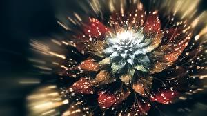 Картинка Крупным планом Капли 3D Графика Цветы